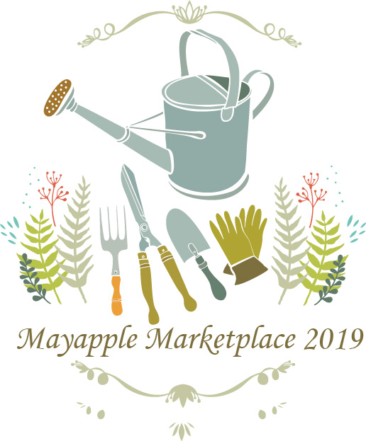 Mayapple-Graphic
